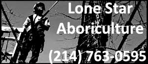 Lonestar Aboriculture